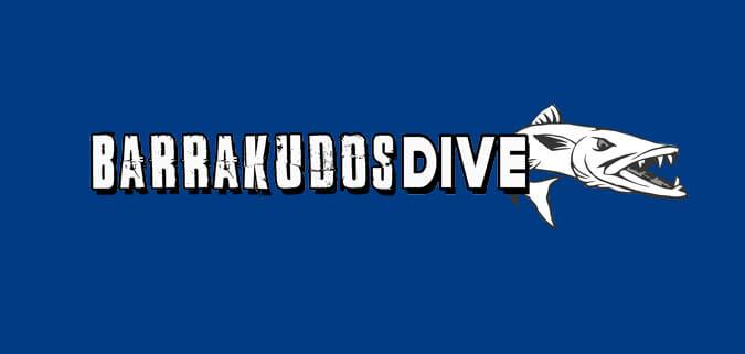 Barrakudos Dive Thailand Logo Design