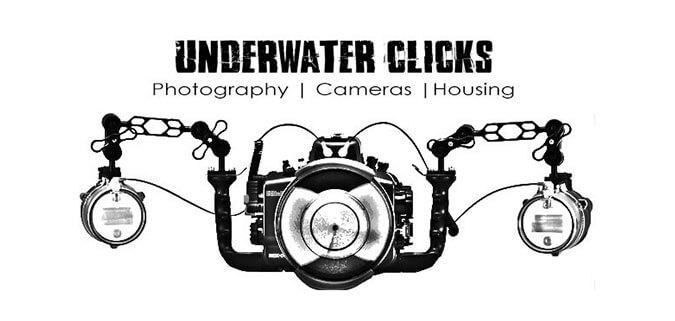 Logo Design --- Client underwater clicks